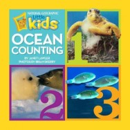 oceancounting